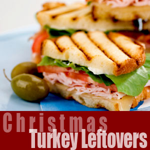 Holiday Turkey Leftovers